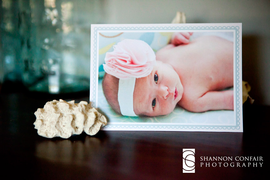 Harisburg PA Newborn Photographer